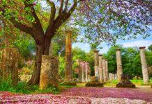 Ολυμπιακοί Αγώνες του ελαιολάδου στην αρχαία Ολυμπία