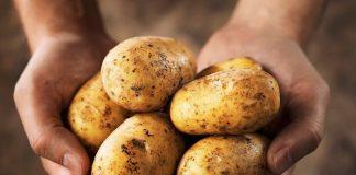 Απάτη σε βάρος των καταναλωτών με «ελληνοποίηση» πατάτας από τη Γαλλία