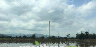 Συγκέντρωση αγροτών και φορέων στην Τεγέα με θέμα τις ζημιές από τη θεομηνία