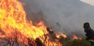Πορτογαλία: Η χώρα δέχεται βοήθεια από την Ισπανία για την αντιμετώπιση πολλών δασικών πυρκαγιών
