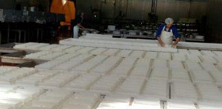 Τυροκομικά και γαλακτοκομικά προϊόντα από την Ηλεία σε Ευρώπη και Αμερική