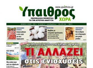 ypaithros-Xora_07-15-2016