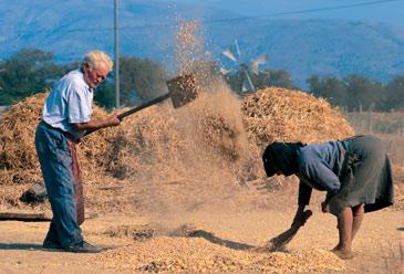 Aγρότες και ψαράδες, οι πλέον επιρρεπείς στις αυτοκτονίες