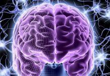 Τα τοξικά χημικά βλάπτουν την ανάπτυξη του παιδικού εγκεφάλου