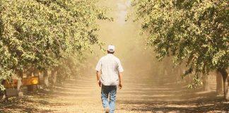 Διαβάστε στην «ΥΧ»: Αφορολόγητο ΤΕΛΟΣ για χιλιάδες αγρότες
