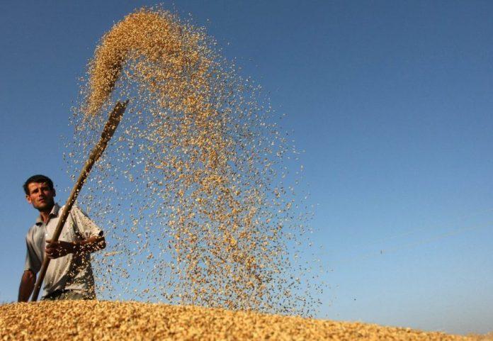 Άνοδο 4,2% κατέγραψε ο Δείκτης Τιμών αγροτικών προϊόντων του FAO τον Ιούνιο