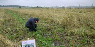 Βιολογικές καλλιεργητικές πρακτικές κατά της κλιματικής αλλαγής