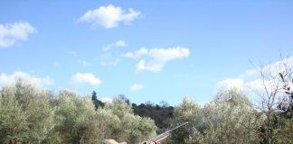 Ηλεκτρονική άδεια για κυνηγούς και σώμα φύλαξης της φύσης ετοιμάζει το ΥΠΕΝ