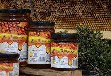 Ο Ελληνοαµερικανός που κέρδισε το στοίχηµα της ποιότητας για το µέλι της Καλύµνου