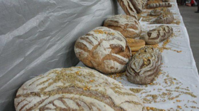 Αττική: H πρώτη γιορτή ψωμιού στο Περιστέρι