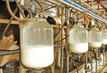 Η σήμανση προέλευσης ως μέτρο αντιμετώπισης της κρίσης στο αγελαδινό γάλα