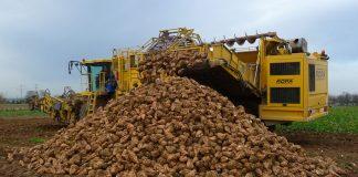 Επιστρέφονται οι εισφορές για την καλλιέργεια ζαχαρότευτλων το 2000