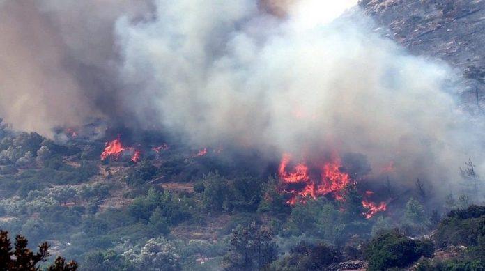 Υπό έλεγχο η φωτιά στα Μαστιχοχώρια Χίου