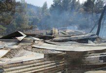 Μέτρα ενίσχυσης υπέρ των παραγωγών που ζημιώθηκαν από πυρκαγιές το 2017 αναλαμβάνει ο ΕΛΓΑ