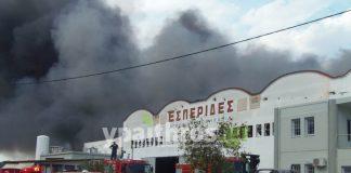 Ο διευθυντής της ΕΑΣ Αργολίδας για την μεγάλη πυρκαγιά στο εργοστάσιο «Εσπερίδες»