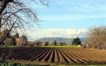 Φοβίζει ο έξτρα φόρος στα αγροτεμάχια