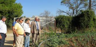 Επίσκεψη Μπόλαρη σε οικολογικό αγρόκτημα στις Αφίδνες