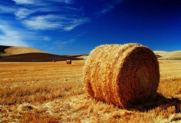 Τα δικαιολογητικά για την πληρωμή των αγροπεριβαλλοντικών