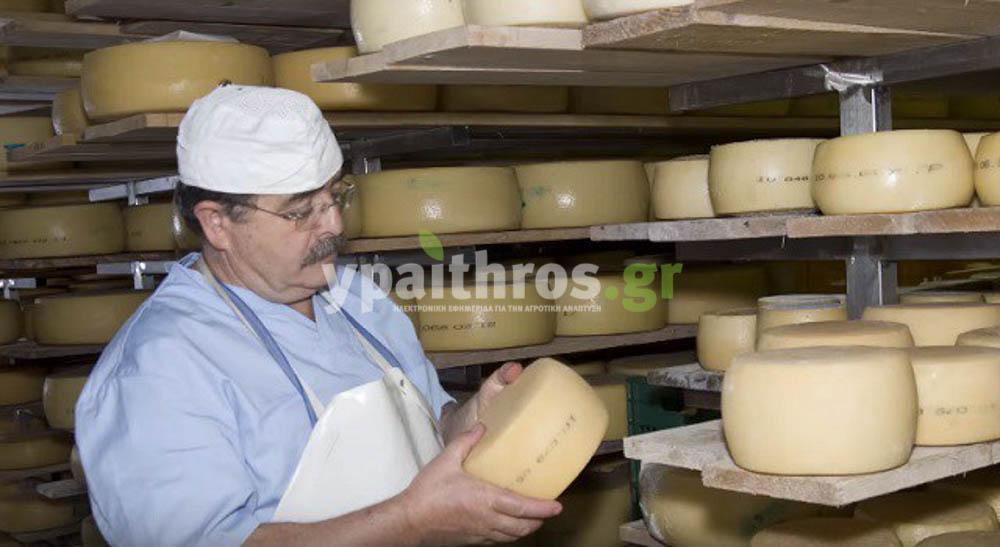 Μανώλης Τζουρμπάκης, τυροκόμος