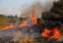 Σε εξέλιξη φωτιά σε αγροτοδασική έκταση στη Θεσσαλονίκη