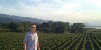 Γ. Βογιατζής: Φουντώνει η παρανομία στο κρασί λόγω εφκ
