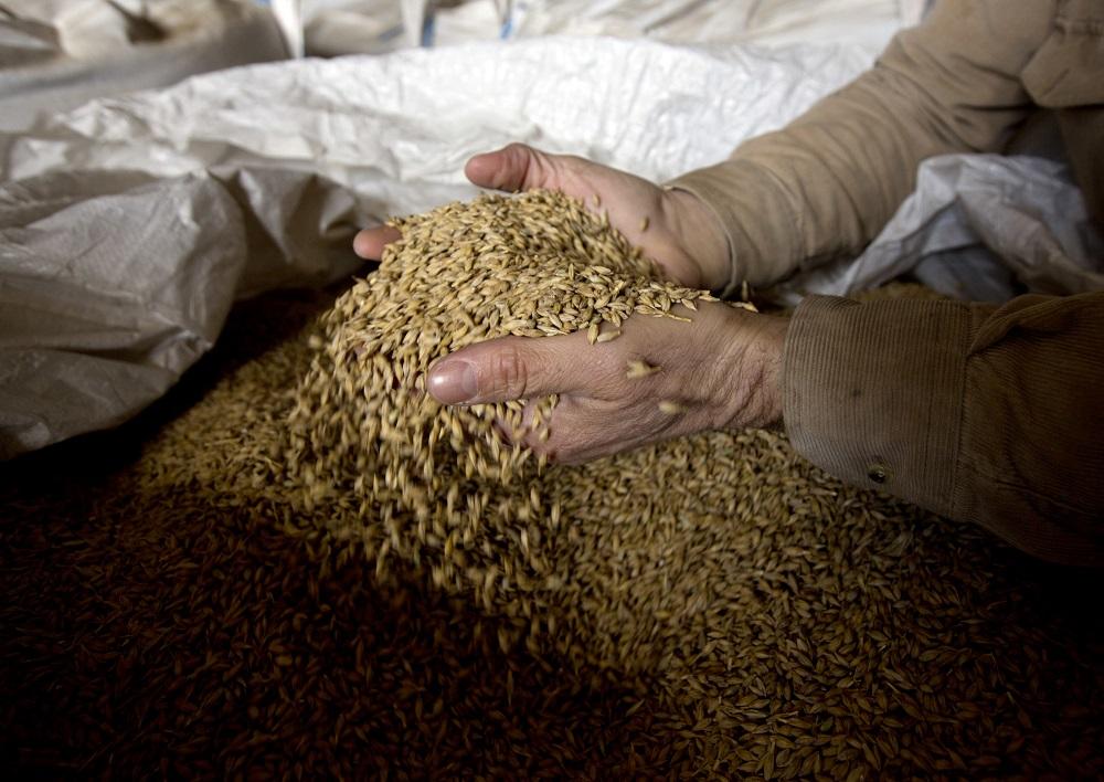 Ε.Α.Σ. Τρικάλων: 18 λεπτά το κιλό το κριθάρι, προκαταβολή 10 λεπτά στα σιτηρά