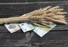 Όλα έτοιμα από τον ΟΠΕΚΕΠΕ για την πληρωμή της εξισωτικής αποζημίωσης σε 84.000 δικαιούχους