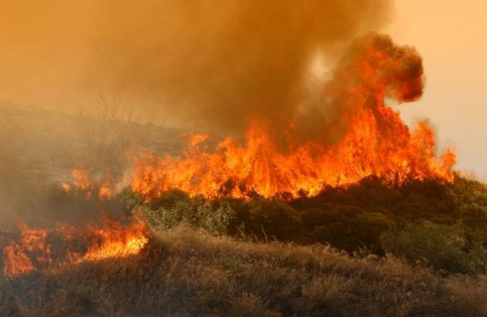 Ενισχύθηκαν οι πυροσβεστικές δυνάμεις που επιχειρούν στη Νεμέα