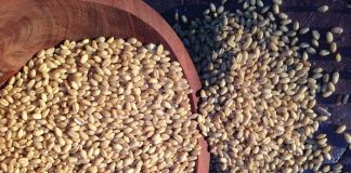 Έπιασε «ευτυχώς» τόπο το κλίμα φόβου στο σκληρό σιτάρι