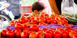 Στη ραστώνη του Αυγούστου αυξήθηκε η τιμή της ντομάτας