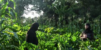 Ανατολή Λάρισας: Ένα οικολογικό και πολυεθνικό μοναστήρι που εκθέτει τα προϊόντα που καλλιεργεί