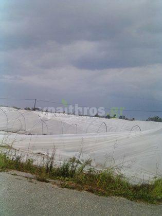 Ανεμοστρόβιλος στην Ανδραβίδα έπληξε αγροτικές καλλιέργειες
