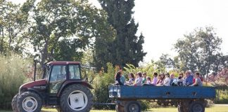 Μπάρμπεκιου στο αγρόκτημα της Αμερικανικής Γεωργικής Σχολής