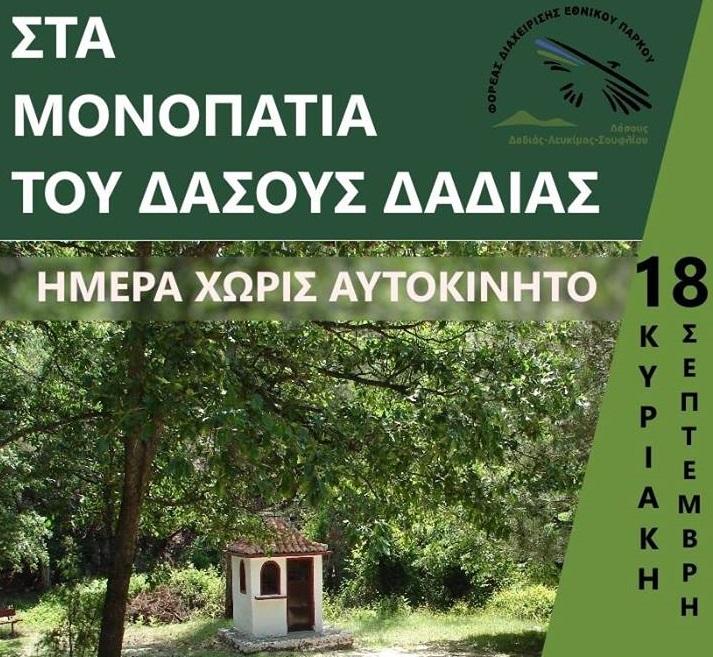 Δάσος Δαδιάς: Πεζοπορία για τον εορτασμό της ημέρας χωρίς αυτοκίνητο