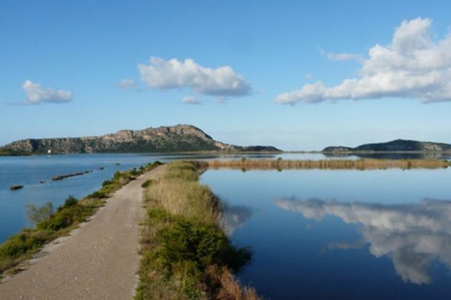 Εθελοντικός καθαρισμός στη λιμνοθάλασσα Γιάλοβα