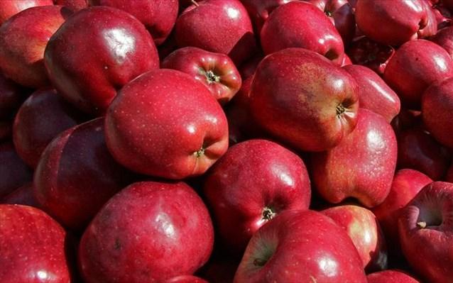 Πειραιάς: Δέσμευση 2,7 τόνων μήλων χωρίς σήμανση