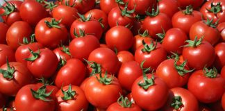 Ρέντης: Δεσμεύτηκαν «αγνώστου ταυτότητας» ντομάτες