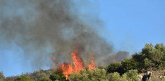 Ισχυροποιείται η Αντιπυρική προστασία των δασών με τη συνεργασία Πυροσβεστικής και Δασικής Υπηρεσίας