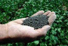 Νάουσα: Εσπερίδα με θέμα, τη χρήση υγρών οργανικών λιπασμάτων στη δενδροκομία