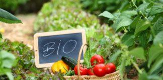 Στο τραπέζι η προοπτική δημιουργίας ξεχωριστού (από τους συμβατικούς) αυτοδιαχειριζόμενου φορέα Αγορών Βιοκαλλιεργητών