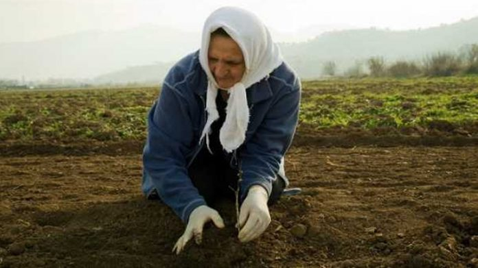 Το ΥπΑΑΤ για την Παγκόσμια Ημέρα Αγρότισσας