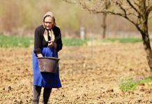 Έως τις 9/11 οι αιτήσεις για τα χρηματοδοτικά βοηθήματα στις πολύτεκνες αγρότισσες μητέρες