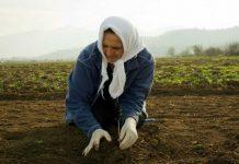 Αγρότισσα: Κολόνα του σπιτιού στη σκιά του άντρα