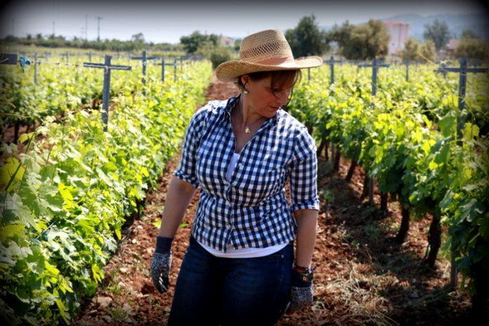 Κρασί από την Κω με άρωμα γυναίκας