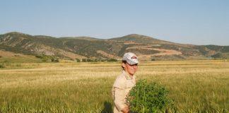 Ημερίδα για την Ελληνίδα Αγρότισσα από το ΥΠΑΑΤ την Τρίτη 16 Οκτωβρίου