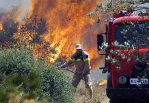 Στους 92 οι νεκροί από την πυρκαγιά στην Ανατολική Αττική
