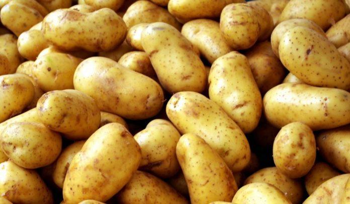 Τσίμπησε η τιμή της πατάτας