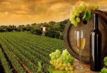 Αύξηση 10% κατέγραψε η οικονομική αξία των εξαγωγών κρασιού της Αυστραλίας