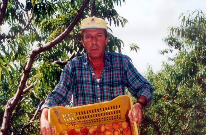Πρόταση για διακρατική συμφωνία Ελλάδας-Αλβανίας για τους εργάτες γης