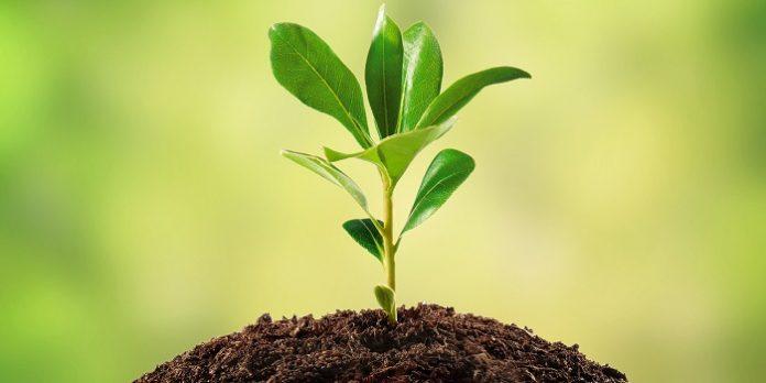 Εναλλακτικό εργαλείο για αγροτικές επενδύσεις ο νέος Αναπτυξιακός νόμος